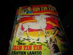 Rin Tin Tin No 7 1973