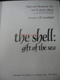 The shell: gift of the sea